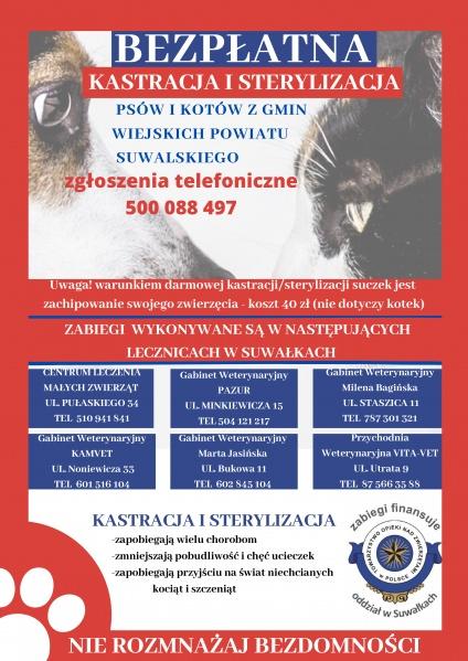 Bezpłatna kastracja i sterylizacja zwierząt